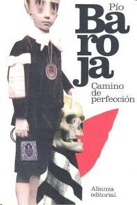 CAMINO DE PERFECCIÓN : PASIÓN MÍSTICA